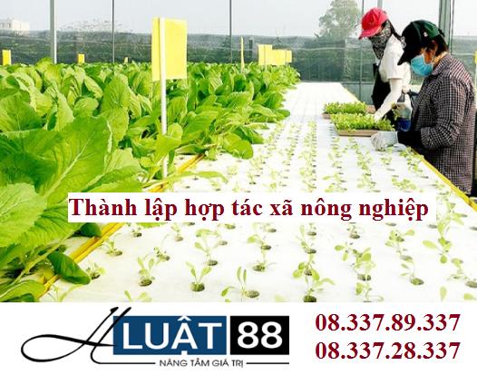 Thành lập hợp tác xã nông nghiệp tại nghệ an